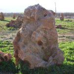 Πέτρες βραχόκηπου
